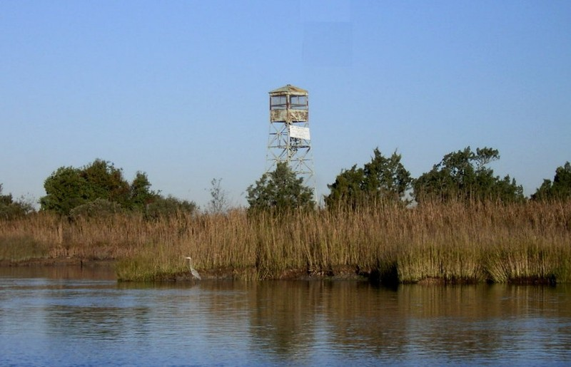 Tower over the former rice fields