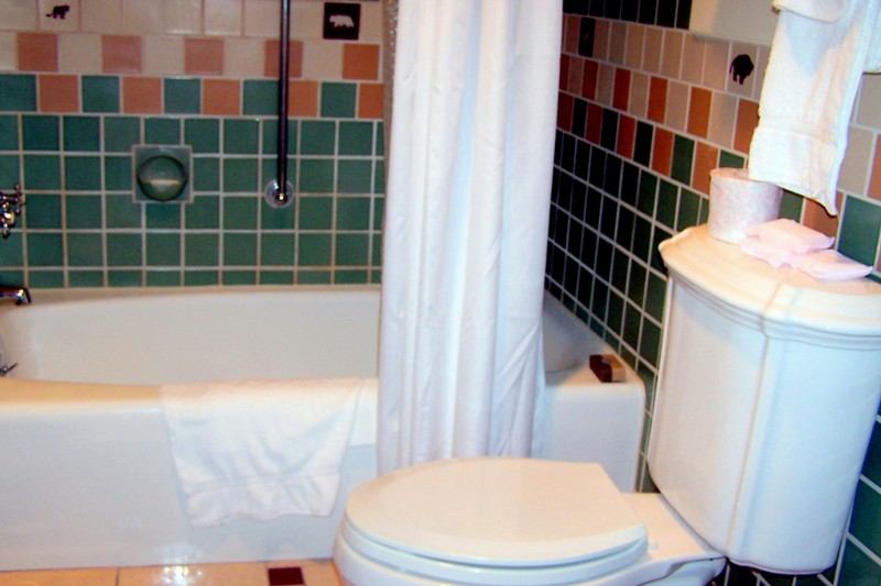 Bathtub and toilet