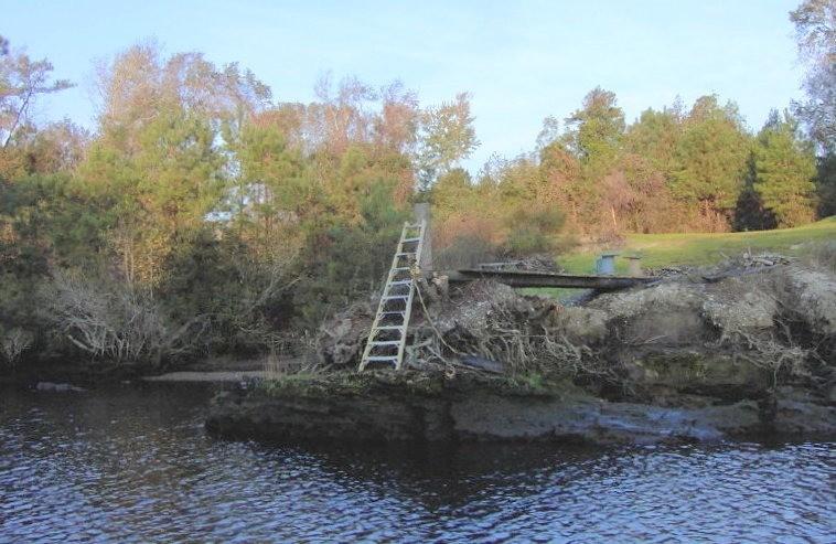 Ladder instead of steps
