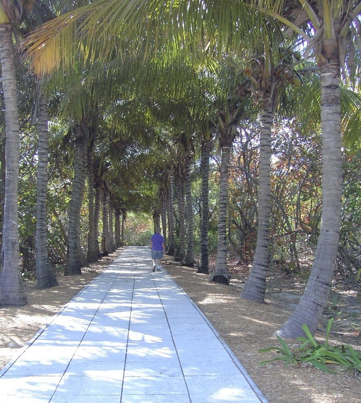 Walkway to the lighthouse