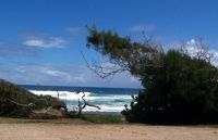 Cattlewash - Surf beside the road - Barbados
