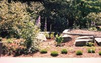 Garden area - Seattle