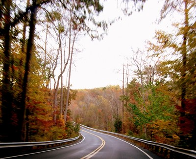 Fall colors - driving to Rips