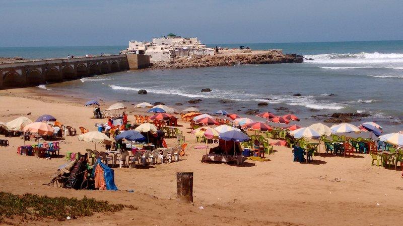 large_Casablanca..nd_devotees.jpg