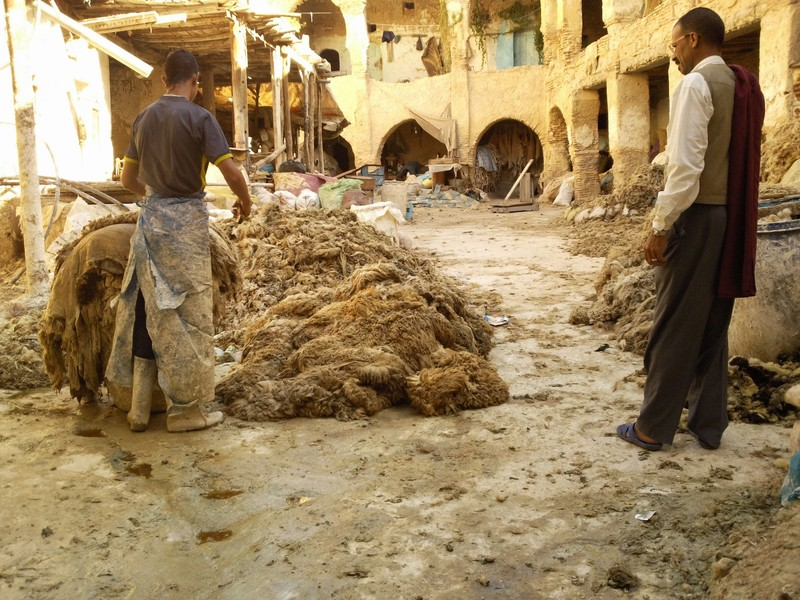 Fes el Bali Chrabilyene animal hide factory