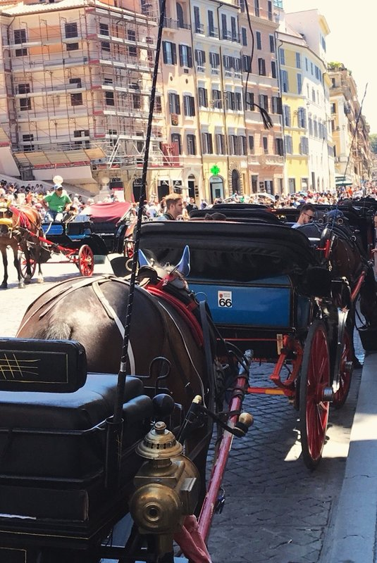 Horse carriages at Spanish Steps