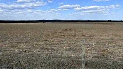 An idea of the flat farming land near Murphy's Haystacks