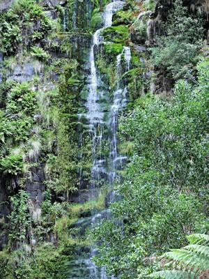 Erskine Falls, near Lorne