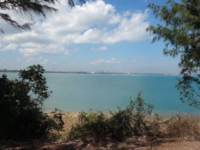 Darwin from East Point