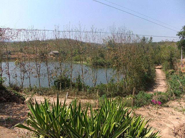 Flight To The Border & China Mengla Walks