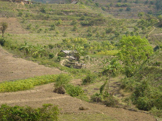 The Jinghong Mud Map Walk (10)