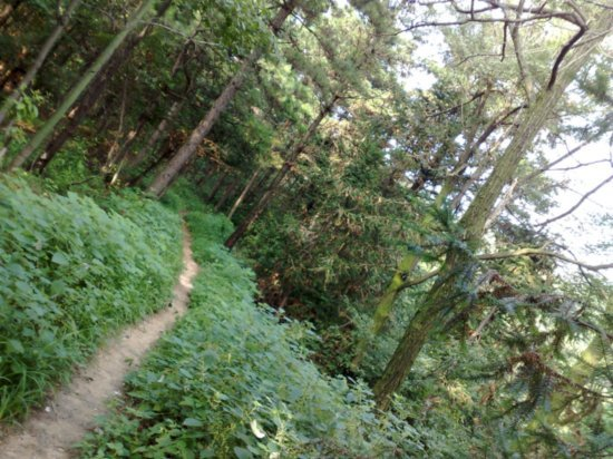 15-Jigongshan Third Day Adventure