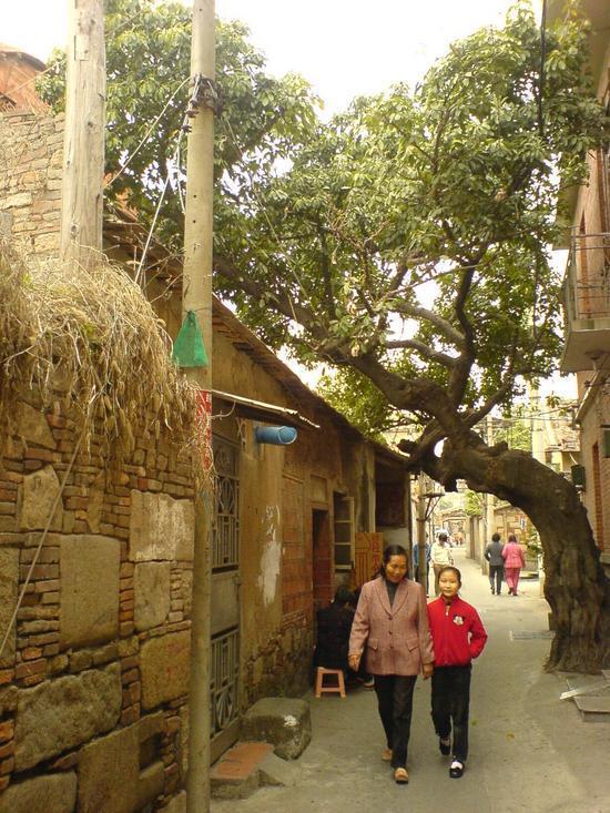 Quanzhou Temple Adventure Day (8)