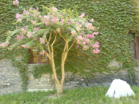 Yangzhou - He Gardens