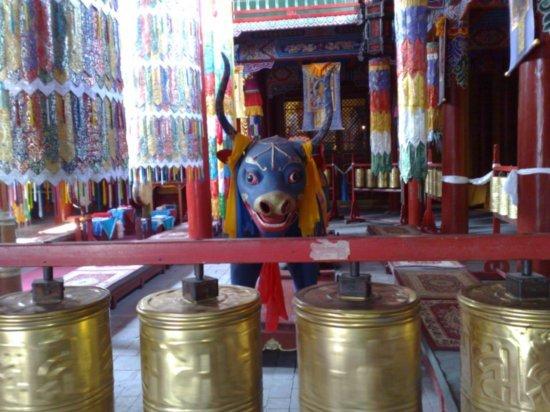 7-Wuta Pagoda & Da Zhao Temple