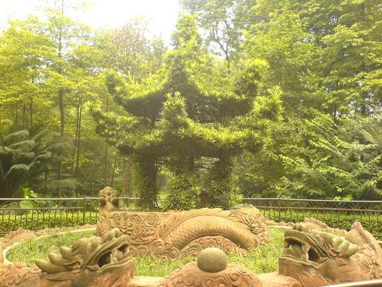 Wenshu &  Temple Renmin Park (11)