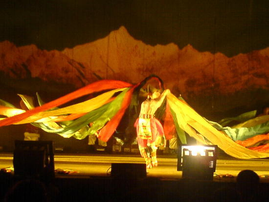 The Minority Peoples Dance (8)
