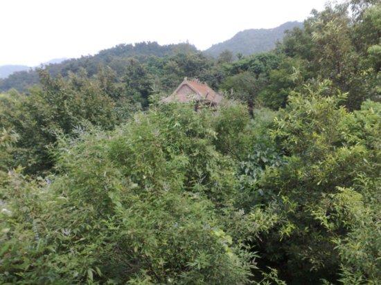 8-Climbing  Down Jigongshan
