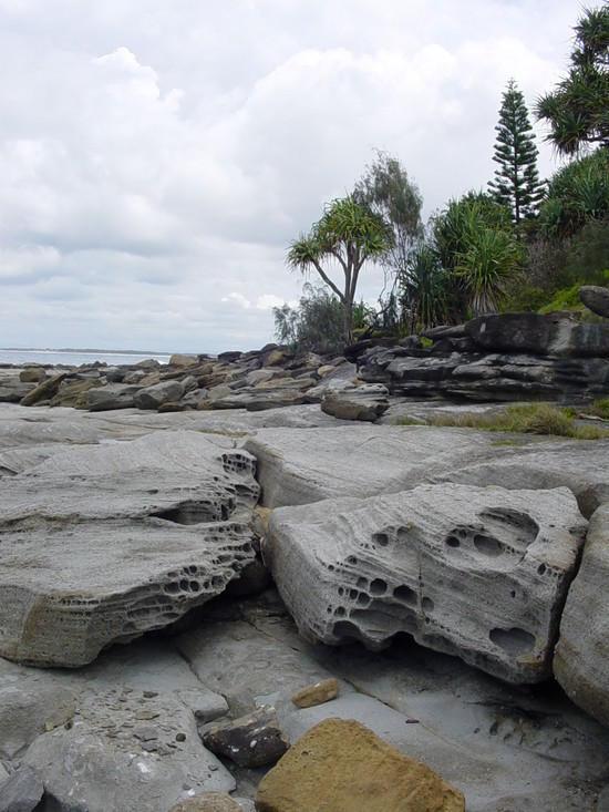 The Sunshine Coast (6)