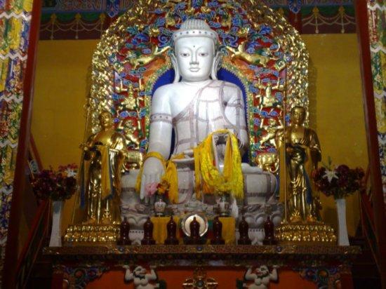 9-Wuta Pagoda & Da Zhao Temple