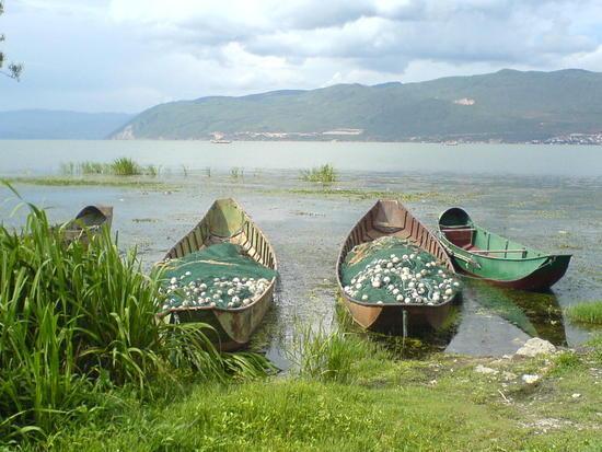 Dali Lake Village Walk (9)