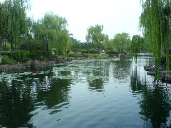 Ningbo City 1