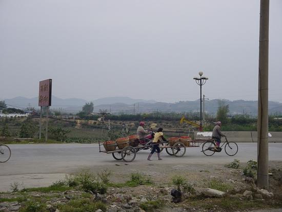 My Tianyang - Walk About (21)