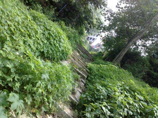 Climbing  Down Jigongshan