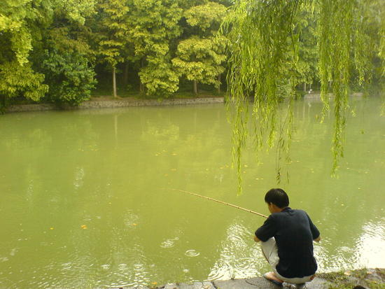 Hefei - City & Gardens Walk (1)
