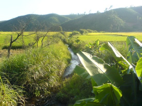 The Great Autumn Rice Harvest Ride 9