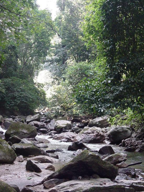 Mandian Waterfalls N BBQ (5)