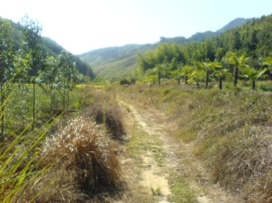 The Great Autumn Rice Harvest Ride 21