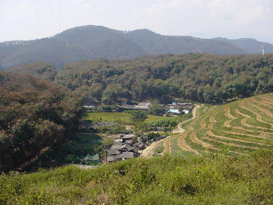 The Jinghong Mud Map Walk (17)