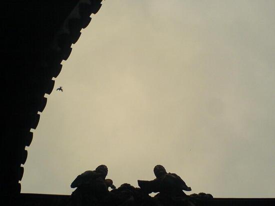 Shanghai City Temple Adventure (29)