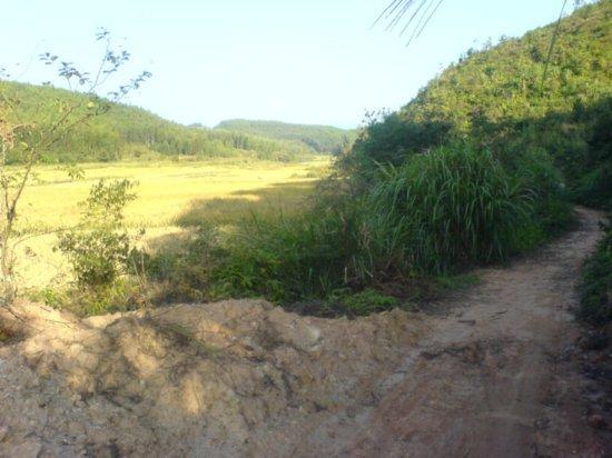 The Great Autumn Rice Harvest Ride 7