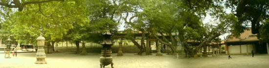Kaiyuan Si Temple (41)