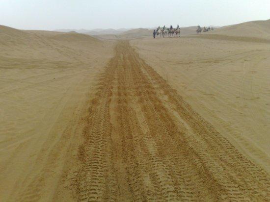 5-Hohhot Desert Adventure