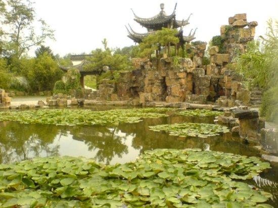 Yangzhou - Slender West Lake & Bonsai 14