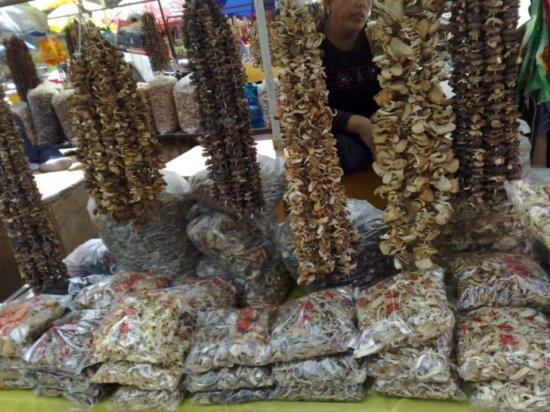 18-Wutai Shan Temple Adventure