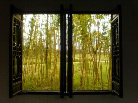 Yangzhou - Slender West Lake & Bonsai 16