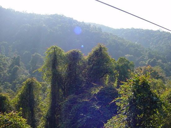 Sanchahe Nature Reserve (15)