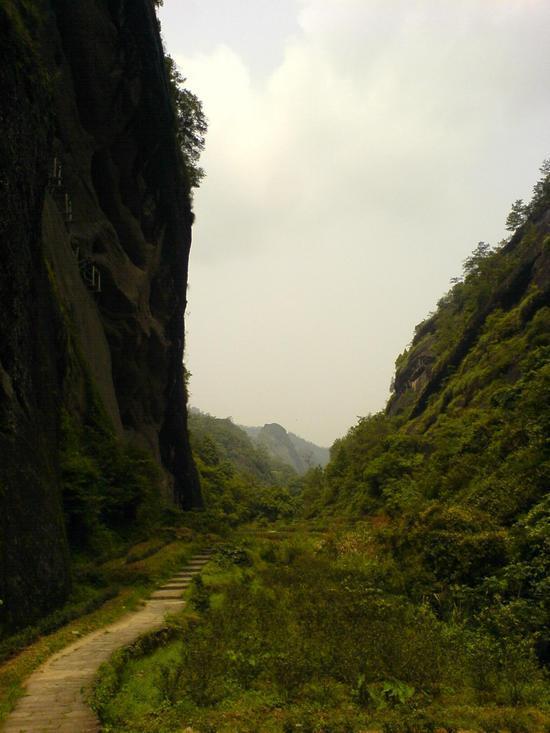 Wuyi Shan Day 2 (10)