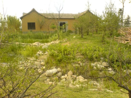 Yangzhou - Slender West Lake & Bonsai 17