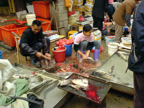 Xiamen - Speedboat & Backstreets (23)