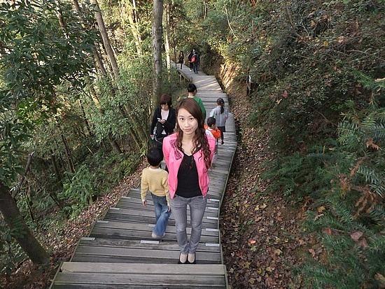 Forrest Mountain Park Adventures