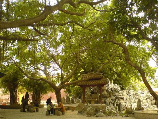 Kaiyuan Si Temple (13)