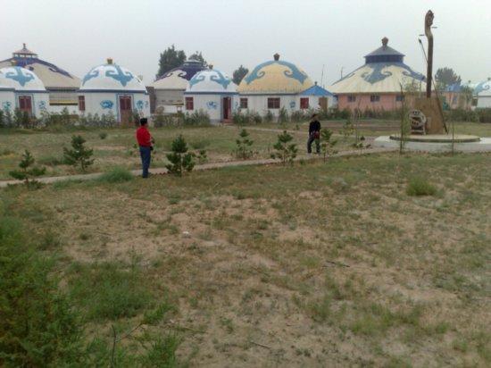 Hohhot Desert Adventure