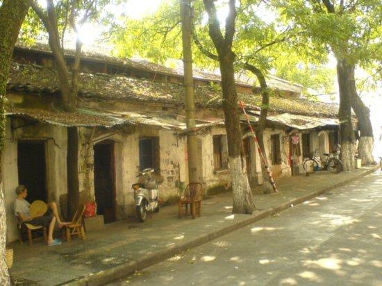 Ningbo City Walk 23