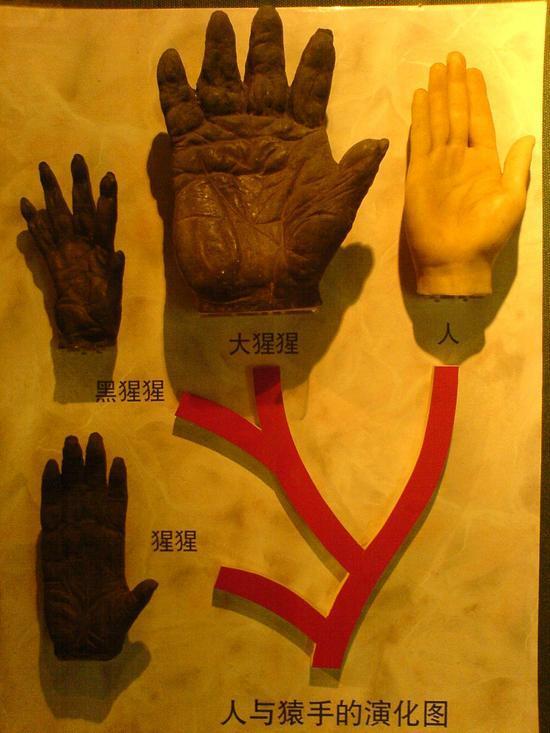 Shanghais Museums Bazaars & Bars (20)