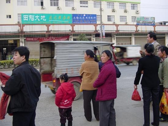 My Tianyang - Walk About